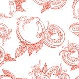 Modèle sans couture monochrome des tomates Image stock