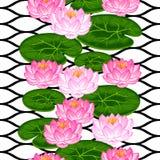 Modèle sans couture naturel avec des fleurs et des feuilles de lotus Fond fait sans masque de coupage Facile à utiliser pour le c Photos stock