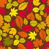 Modèle sans couture naturel de beau vecteur de feuilles Image stock