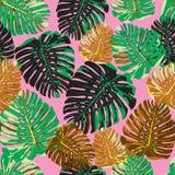 Modèle sans couture pl tiré par la main d'isolement coloré de feuilles tropicales Image stock