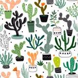 Modèle sans couture tiré par la main avec des cactus et des succulents, conception de vecteur Image libre de droits