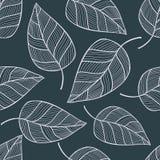 Modèle sans couture tiré par la main avec des feuilles Photo stock