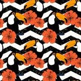 Modèle sans couture tiré par la main avec des toucans dans le vecteur Photos libres de droits