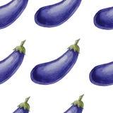 Modèle sans couture tiré par la main d'aquarelle avec des aubergines Images stock