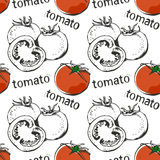 Modèle sans couture tiré par la main de tomates illustration libre de droits