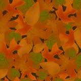 Modèle sans couture tombé rouge de feuilles Illustration de vecteur d'herbier Image stock