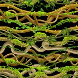 Modèle sans couture tordu de lianes sauvages illustration stock