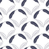 Modèle sans couture tropical avec des feuilles de mangue Dirigez l'illustration tirée par la main pour la copie, textile, papier  Photo libre de droits