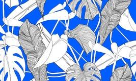 Modèle sans couture tropical de vecteur Plantes vertes exotiques sur le fond bleu Feuilles de banane et de monstera Tapotement sa illustration stock
