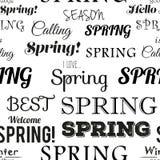 Modèle sans couture typographique moderne de ressort Photos stock