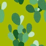 Modèle sans couture vert de cactus de vecteur Images libres de droits