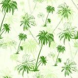 Modèle sans couture vert de palmier au-dessus de vecteur Photos libres de droits