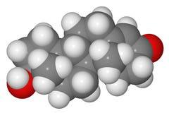 Modèle servant à blanc de molécule de testostérone Photographie stock libre de droits