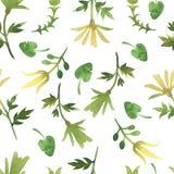 Modèle simple d'aquarelle avec des feuilles Modèle floral léger sur un fond blanc simple Photos stock