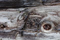 Modèle texturisé en bois de fond photos libres de droits
