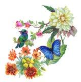 Modèle tiré par la main d'aquarelle avec des fleurs d'été et des oiseaux exotiques Photographie stock