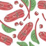 Modèle tiré par la main de rhubarbe feuilles, groupes coupés et entiers avec la composition en fraises Bon pour le contexte, text illustration stock