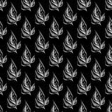 Modèle tiré par la main sans couture des feuilles abstraites de laurier d'isolement sur le fond noir Dirigez l'illustration flora illustration de vecteur