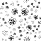 Modèle tiré par la main sans couture des fleurs roses abstraites d'isolement sur le fond blanc Dirigez l'illustration florale Déc illustration libre de droits