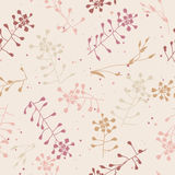 Modèle tiré par la main sans couture floral Photo libre de droits