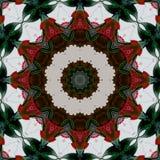 Modèle traditionnel indien en couleurs - mandala de fleur - courbes Arabesque ethnique tribal de résumé Configuration tribale Con illustration stock