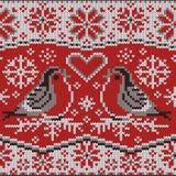 Modèle tricoté avec des bouvreuils Photos libres de droits