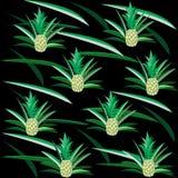 Modèle tropical avec des ananas sur le noir illustration libre de droits