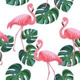 Modèle tropical avec des flamants et des feuilles Texture sans joint Illustration Stock