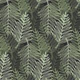 Modèle tropical de feuilles de vert de résumé illustration de vecteur