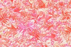 Modèle tropical lumineux de feuille dans les roses Photo libre de droits