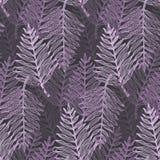 Modèle tropical pourpre élégant de feuilles de résumé illustration de vecteur