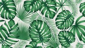 Modèle tropical sans couture à la mode avec la jungle exotique de feuilles et d'usines illustration de vecteur
