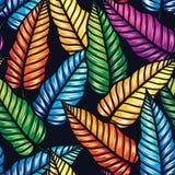 Modèle tropical sans couture avec des feuilles Images stock