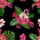 Modèle tropical sans couture avec les fleurs exotiques photos libres de droits