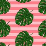 Modèle tropical sans couture de Monstera illustration stock