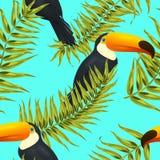 Modèle tropical sans couture, fond exotique avec des branches de palmier, feuilles, feuille, palmettes Texture sans fin Photos stock