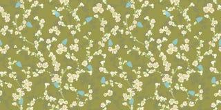 Modèle vert avec les fleurs de cerisier et le papillon illustration de vecteur