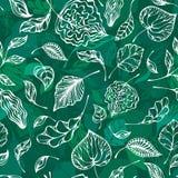 Modèle vert sans couture Photographie stock
