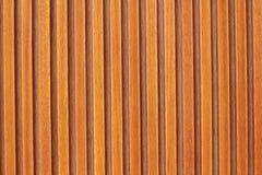 Modèle vertical photos stock