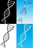 modèles d'ADN Images stock