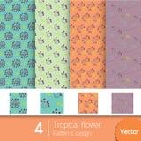4 modèles de conception tropicale avec des couleurs du ton Photographie stock