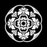 modèles de fleurs Photographie stock libre de droits