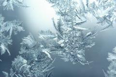 Modèles de Frost Photo libre de droits