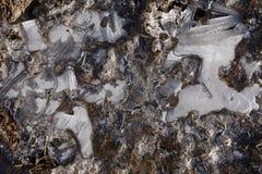 Modèles de glace d'hiver Photos stock