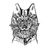 Modèles de vecteur de Husky Wolf Dog Photo libre de droits
