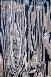 Modèles en bois Image libre de droits