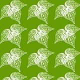Modèles floraux de beauté sans couture sur le fond vert Photo stock