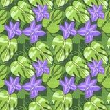 Modèles floraux de ressort Images libres de droits