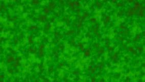 Modèles organiques abstraits de fractale dans le mouvement Le changement forme le fond d'animation banque de vidéos