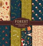 Modèles sans couture de forêt Collection de vecteur illustration stock